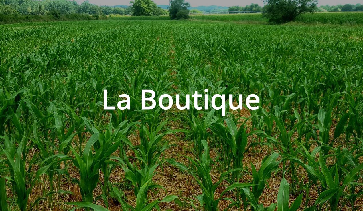 La Boutique Softivert